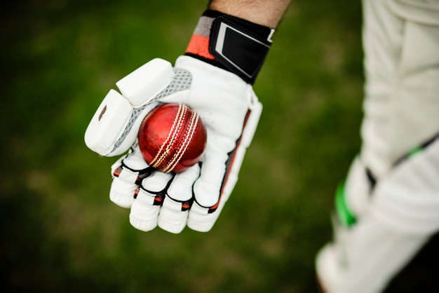 Name:  cricket-player-getting-ready-play_53876-69766.jpg Views: 107 Size:  51.2 KB